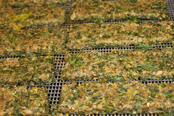 Adapted from Rawmazing Cheezy Kale Crackers